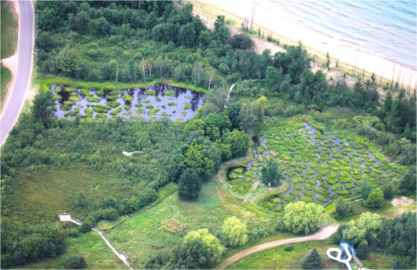 pi wetland