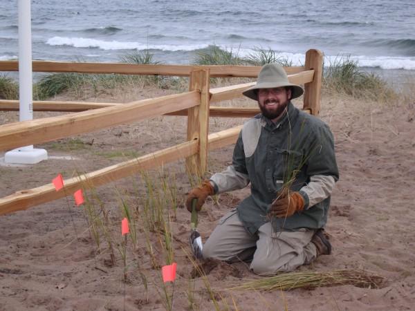 dune restoriation