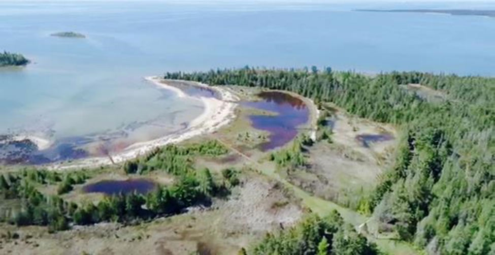 Aerial view of the Lake Huron Community Forest